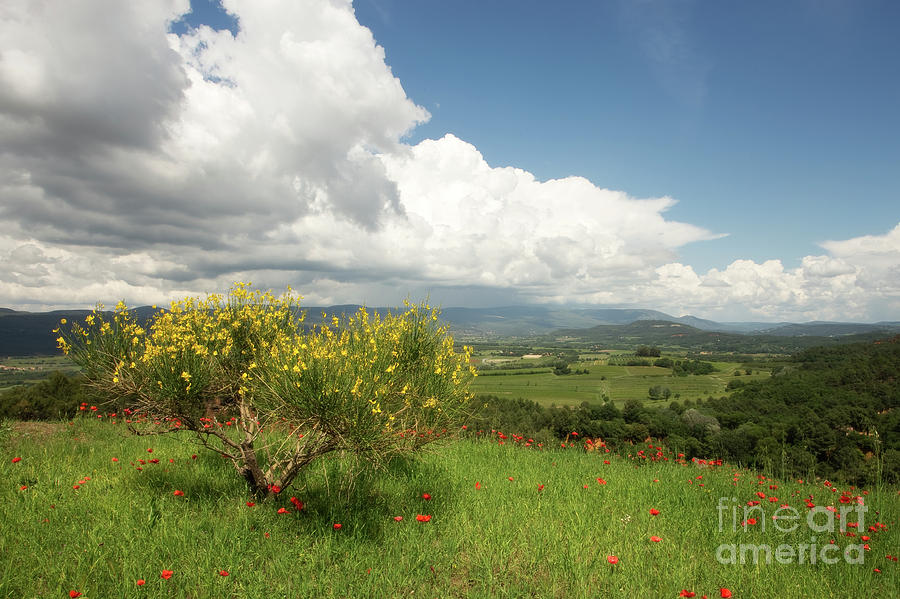 Poppy Photograph - Provence Panorama from Atop Roussillon by Matt Tilghman