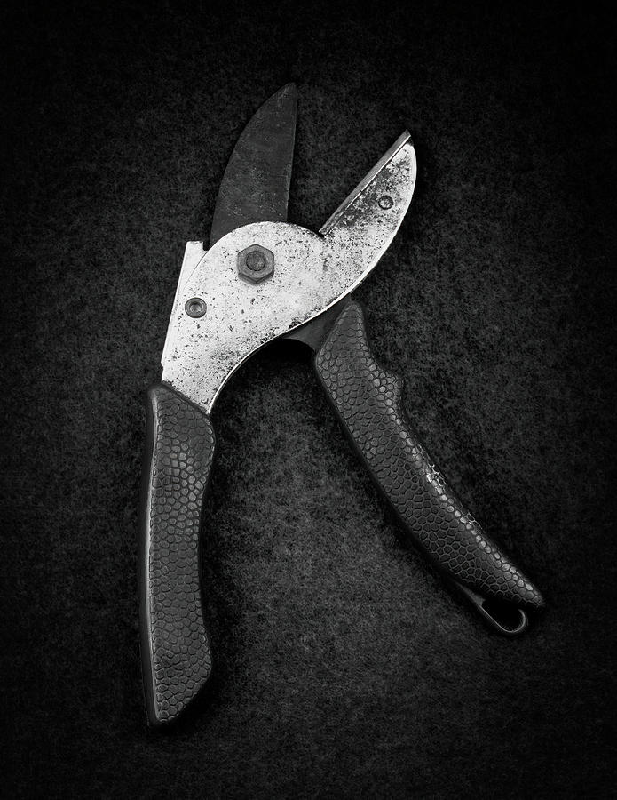 pruners  by Rudy Umans