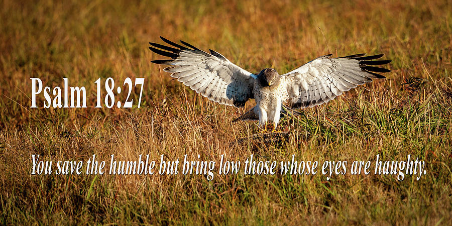 Psalm 18 27 Humble by Jeff Phillippi