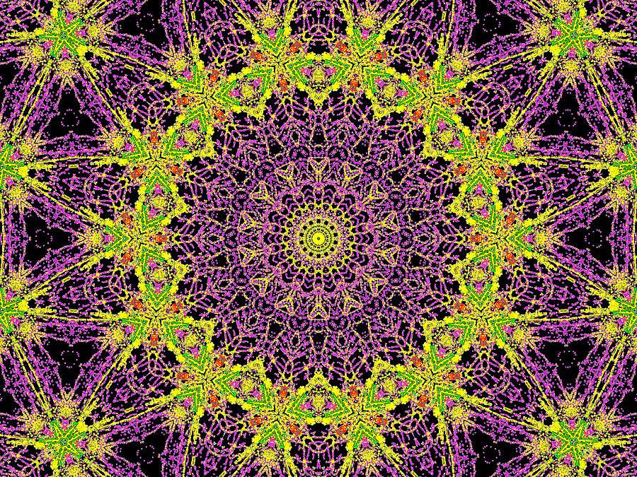 Psychedelic Kaleidoscope Abstract Pattern 9 Digital Art By Artist Dot
