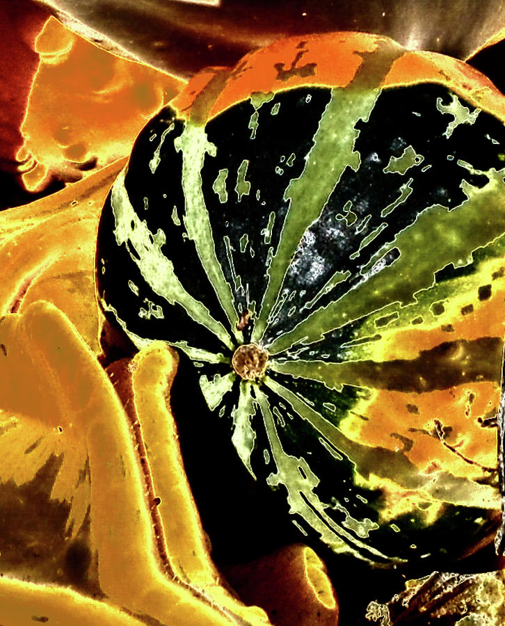Psychedelic Winter Squash 3 by Paul Croll
