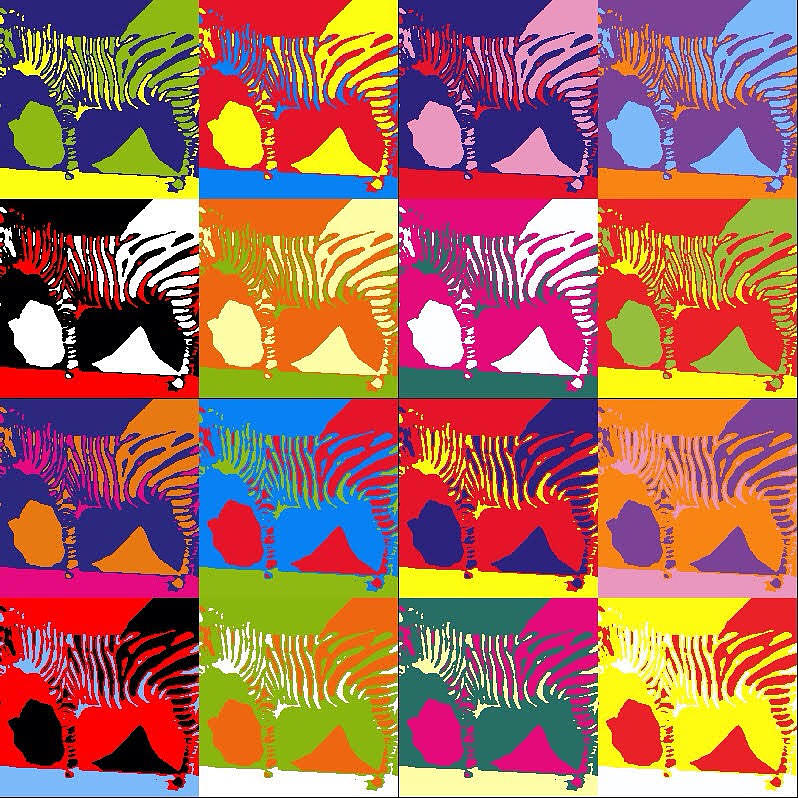 Psychedelic Zebras by Karen Buford