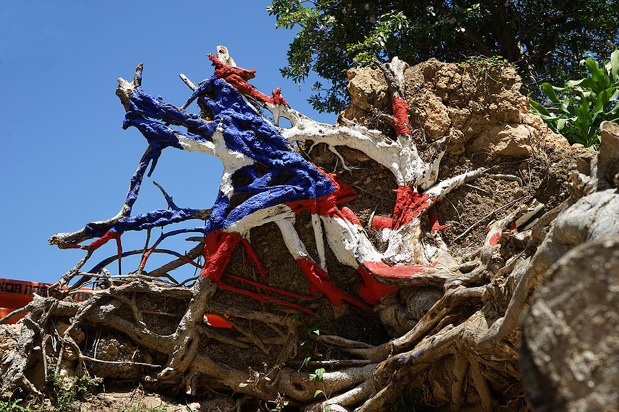 Puerto Rico - The Roots of the Flag by Richard Reeve