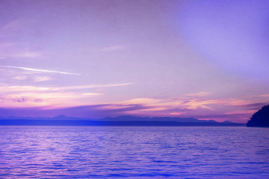 Puget Sound in Purple by Cathy Anderson