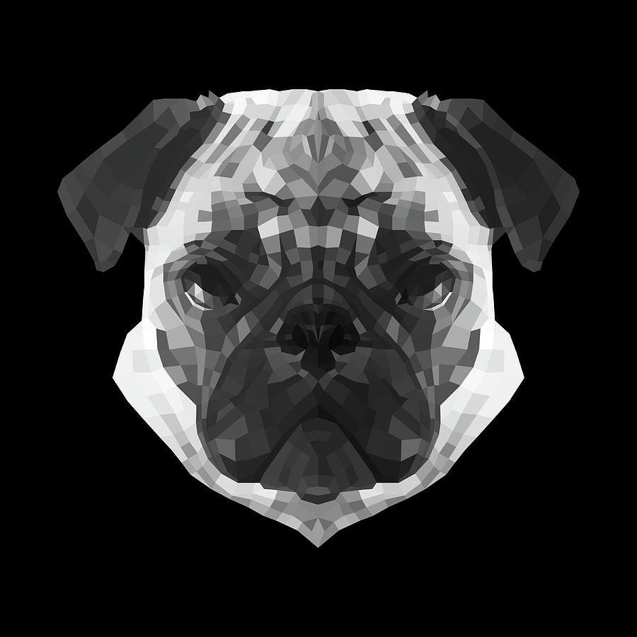 Pug Digital Art - Pugs Face by Naxart Studio