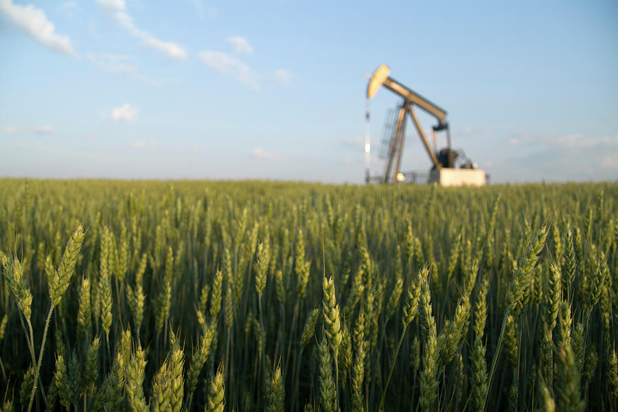 Pumpjack In A Field Photograph by Shotbydave