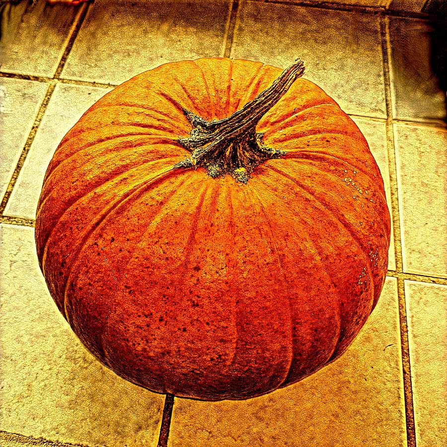 Pumpkin Digital Art - Pumpkin On Tile by Keith Cassatt