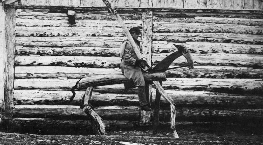 Punishment Horse Photograph by Hulton Archive