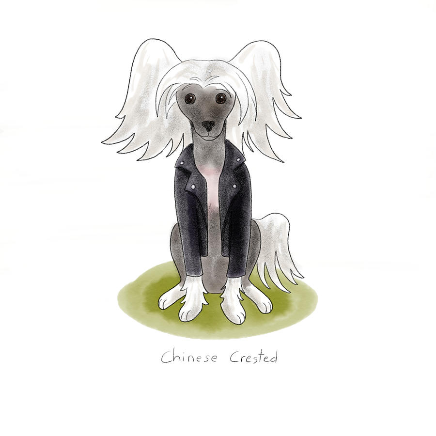 Dog Painting - Punk Rock Chinese Crested by Christy Beckwith