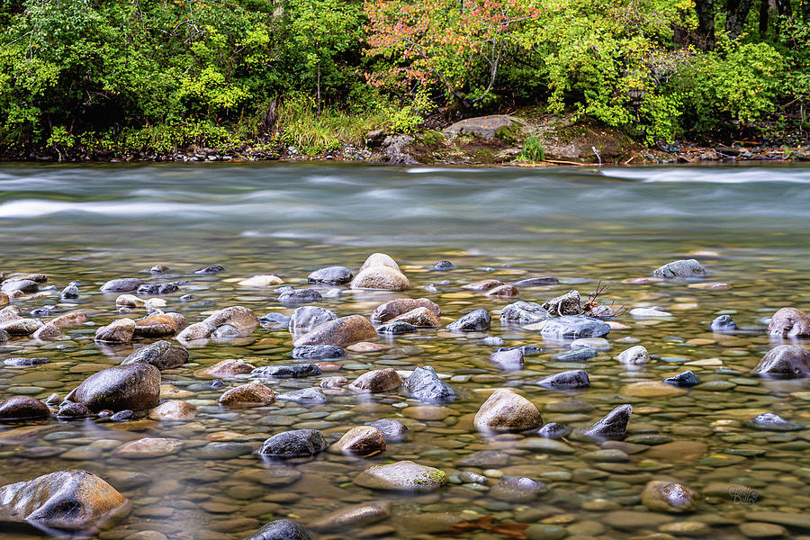 Puntledge River-3 by Claude Dalley