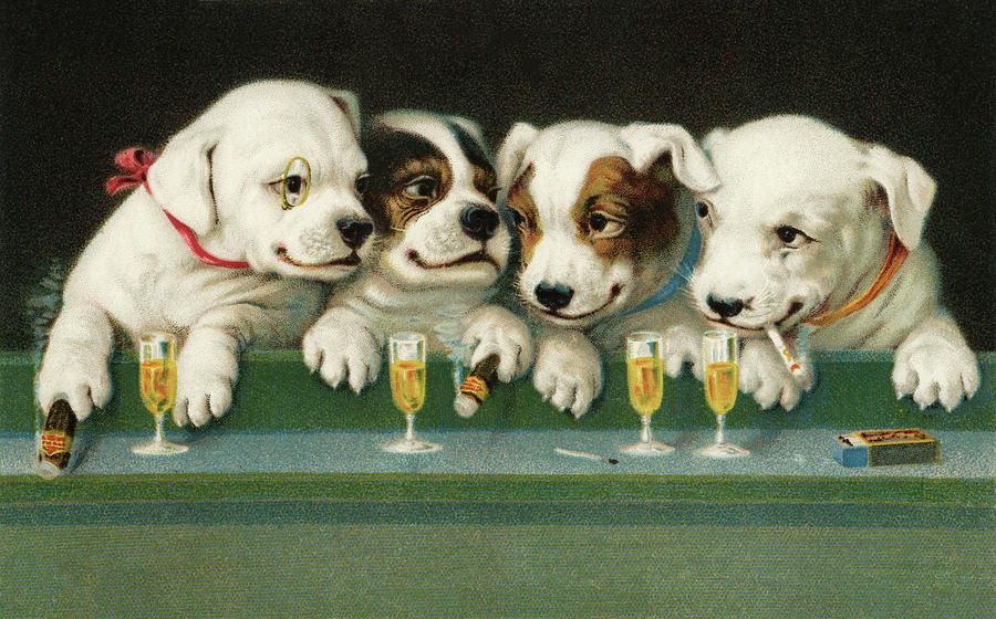 Puppies Drinking And Smoking Photograph by Graphicaartis