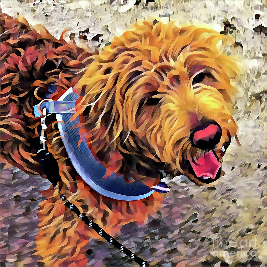 Puppy Digital Art - Puppy out for a walk by Christine Segalas