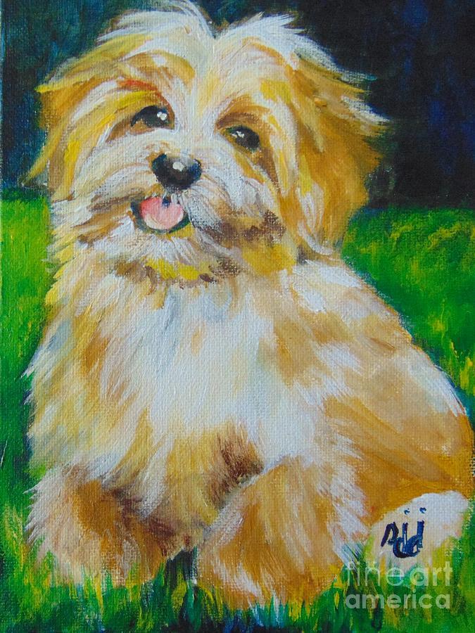 Puppy by Saundra Johnson