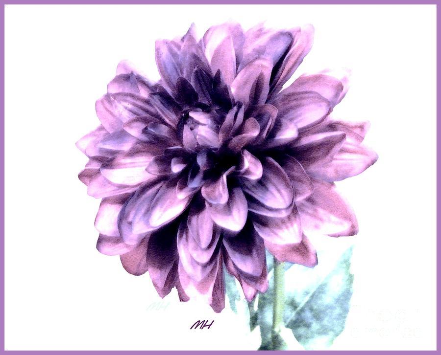 Photo Photograph - Purple Blend Petals Two by Marsha Heiken