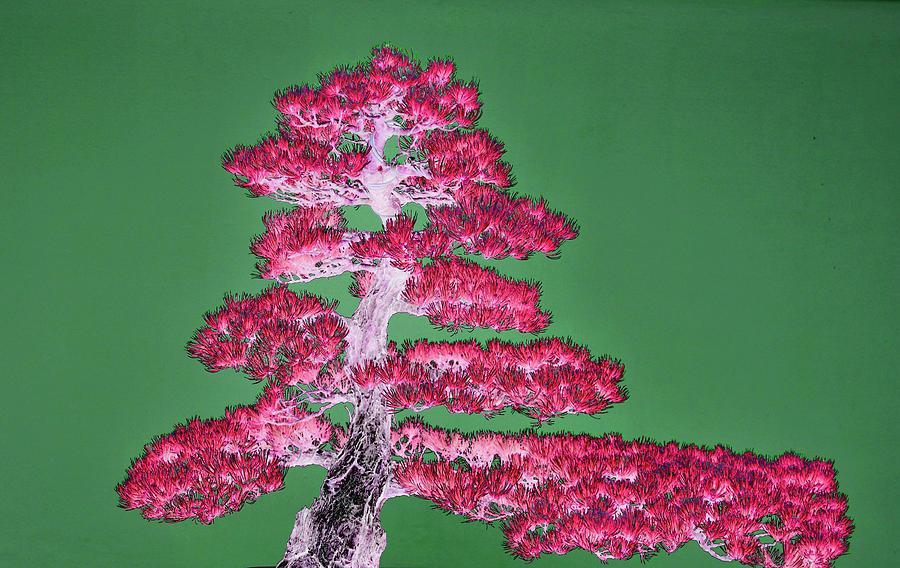 Purple Bonsai Tree Digital Art By Tom Kelly
