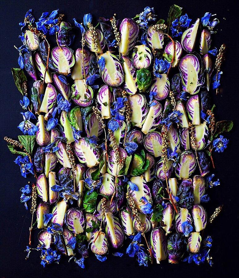 Purple Brussels Sprouts  by Sarah Phillips