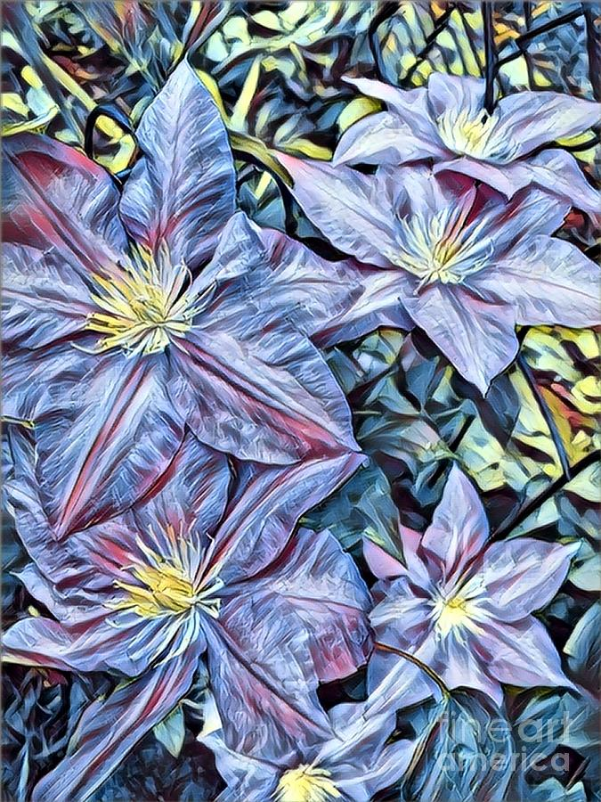 purple clematis  by HD Connelly
