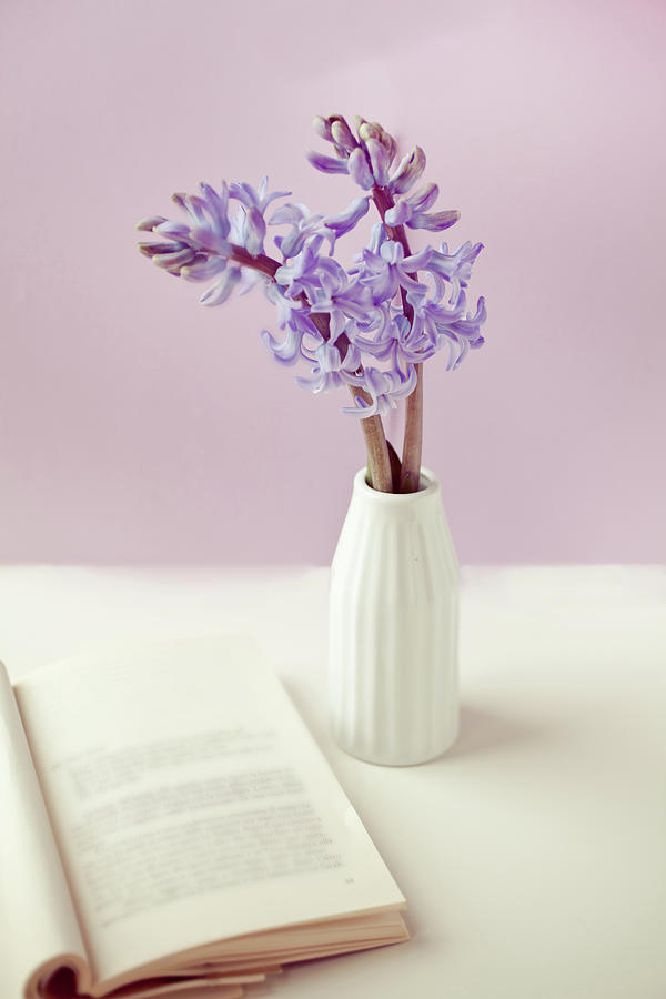 Purple Flower Vase Photograph by Uccia photography