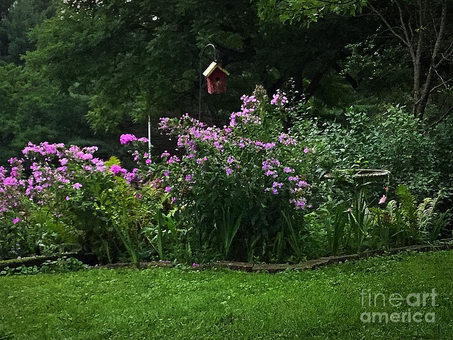 Garden Photograph - Purple Flowers Spring Garden  by Frank J Casella