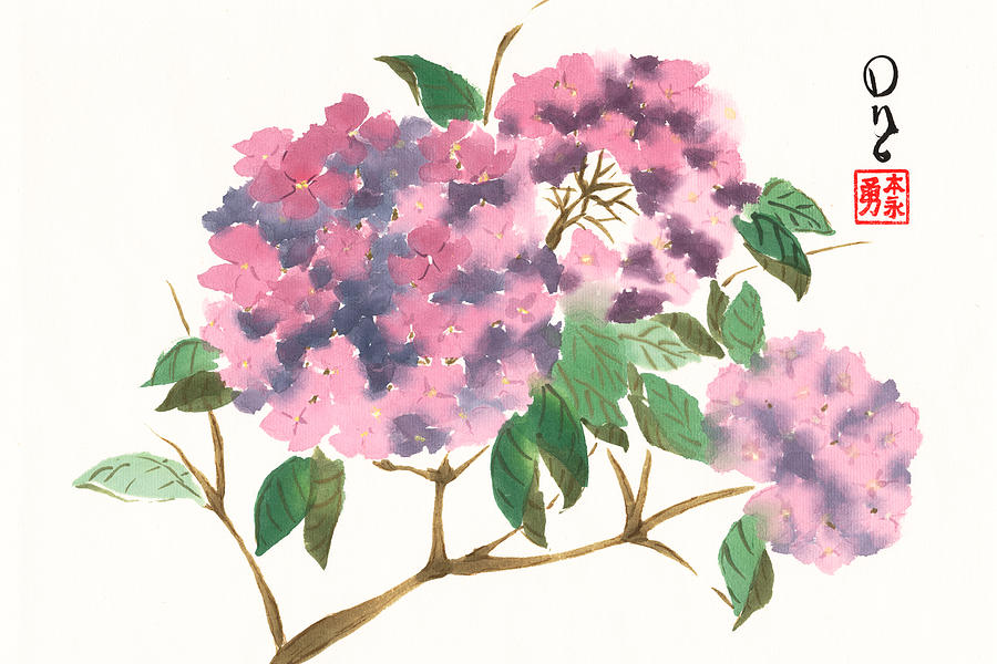 Purple Hydrangeas by Derek Motonaga
