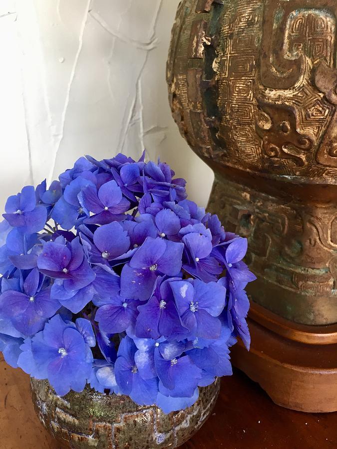 Purple Hydrangeas for the house  by Lehua Pekelo-Stearns