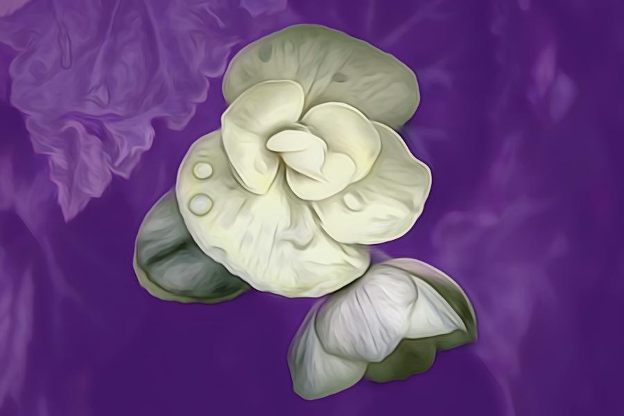 Purple Mist by Renette Coachman
