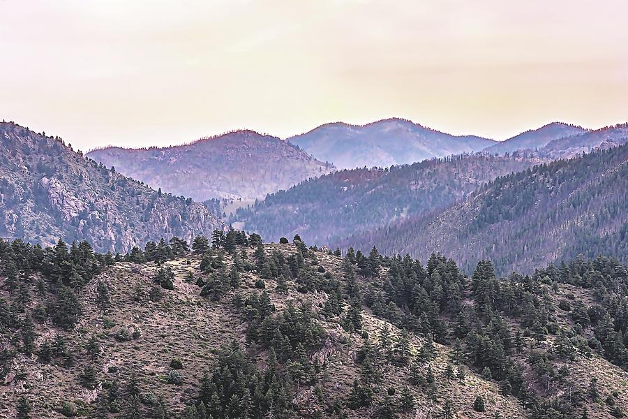 Purple Mountains Majesty by Jennifer Grossnickle