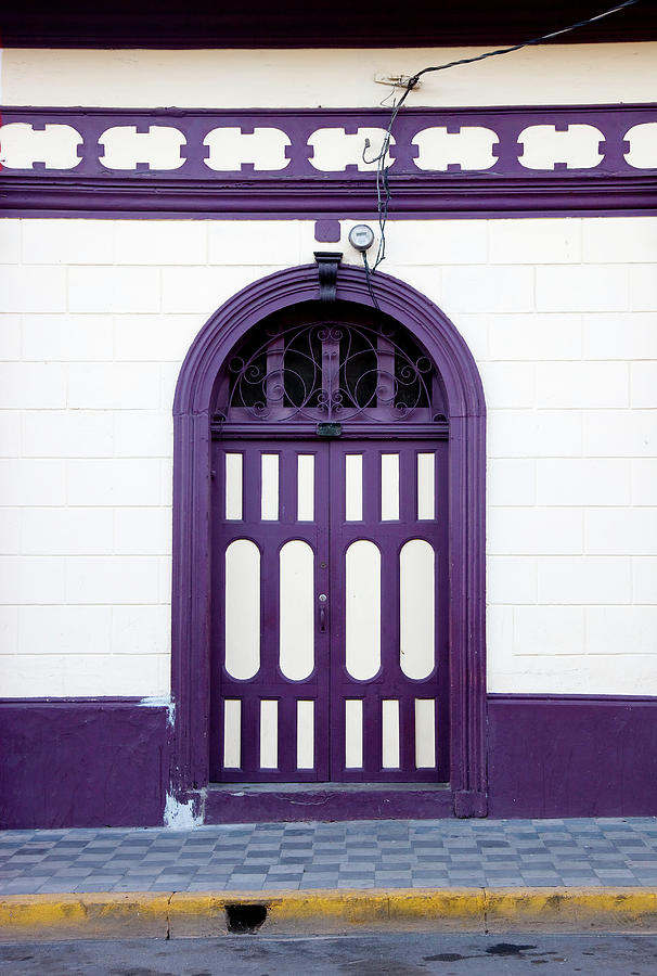 Purple On White Photograph by Anknet