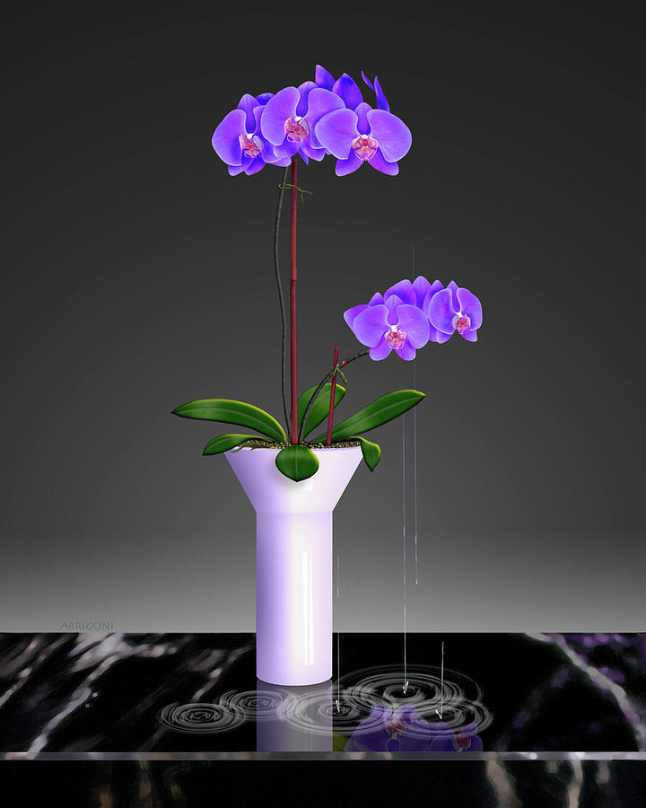 Purple Phalaenopsis Orchids in Vase by David Arrigoni