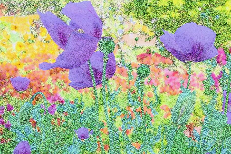 Purple Poppies Photograph