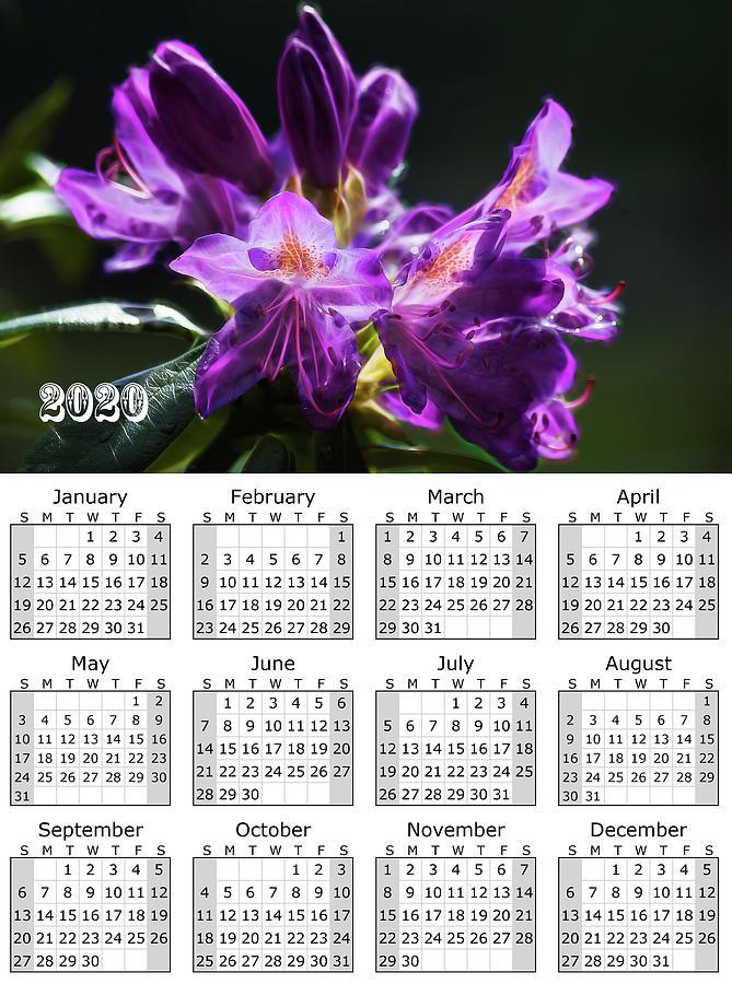 Purple Rhododendron Calendar 2020 by Yulia Kazansky