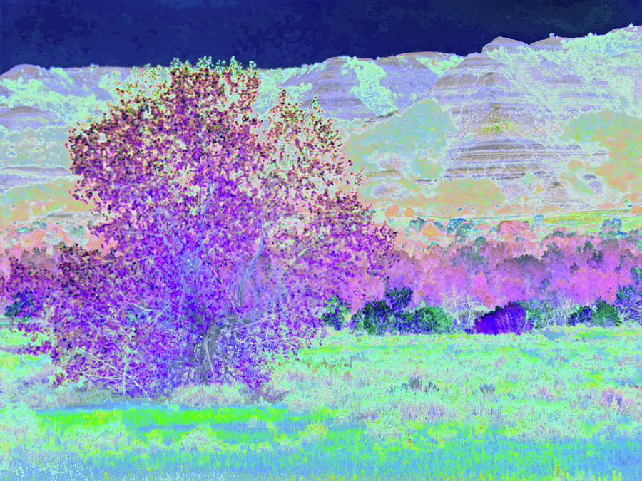 North Dakota Photograph - Purple Tree Reverie by Cris Fulton