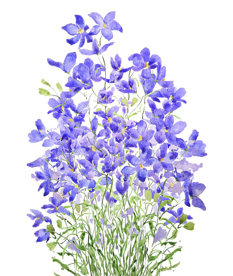 purple wild flower watercolor painting by Color Color
