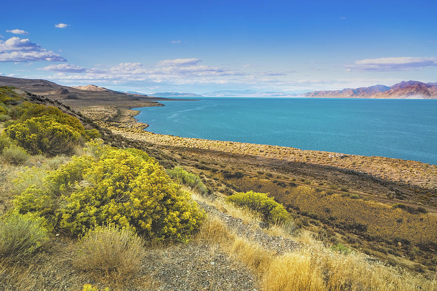 Pyramid Lake in by Janis Knight