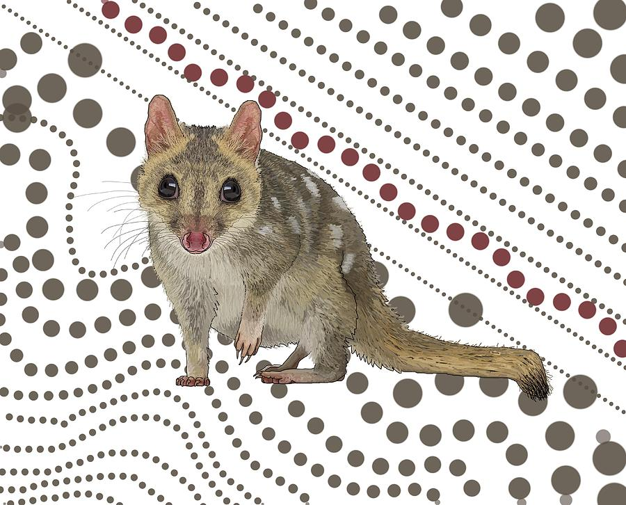 School Digital Art - Q Is For Quoll by Joan Stratton
