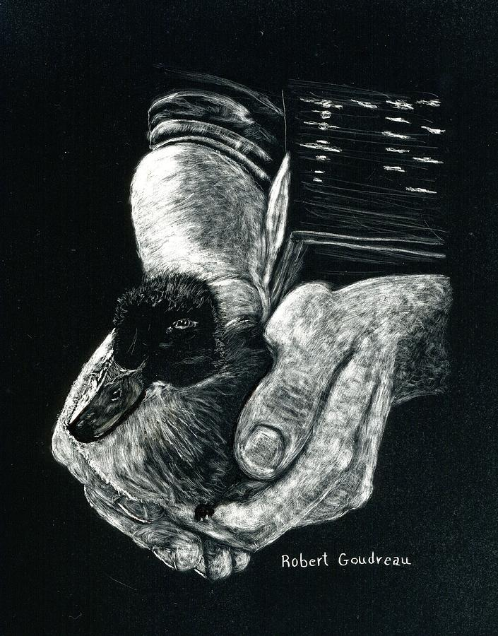 Black And White Drawing - Quack by Robert Goudreau