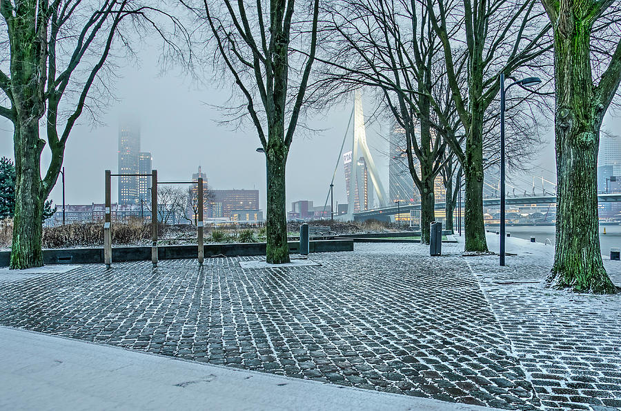 Quayside Park on a Winter Morning by Frans Blok