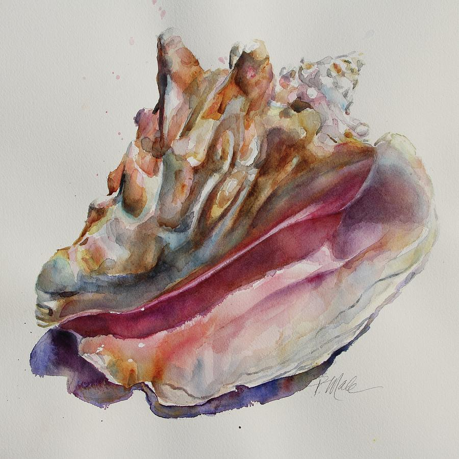 Queen Conch Shell by Tracy Male