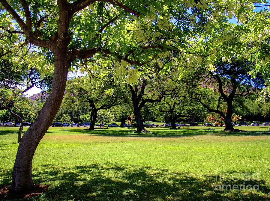 Queen Kapiolani Park at the foot of, Diamond Head Crater by D Davila