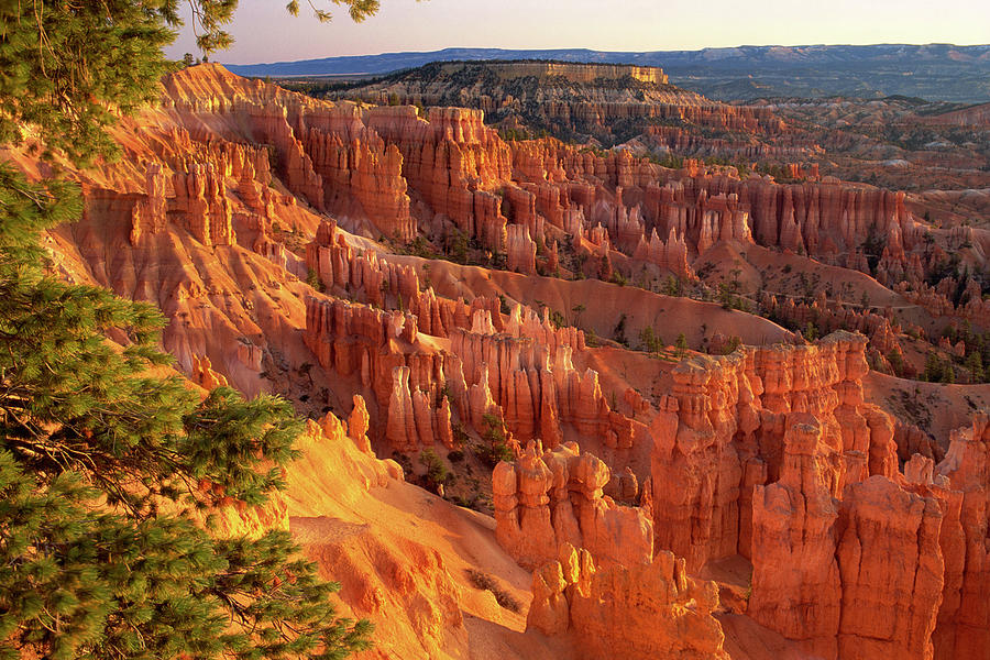 Queens Garden Hoodoos At Sunrise. Bryce Photograph by Comstock Images