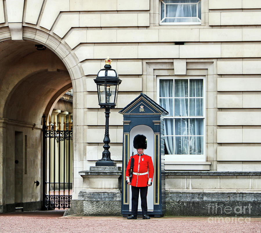 Queens Guard At Buckingham Palace Photograph