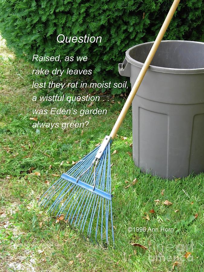 Question Photograph