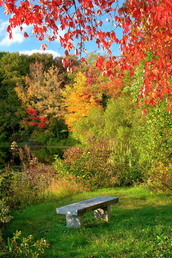 Autumn Photograph - Quiet Autumn Moments by Luke Moore