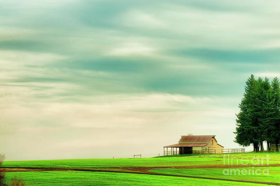 Quiet Morning by Dee Browning