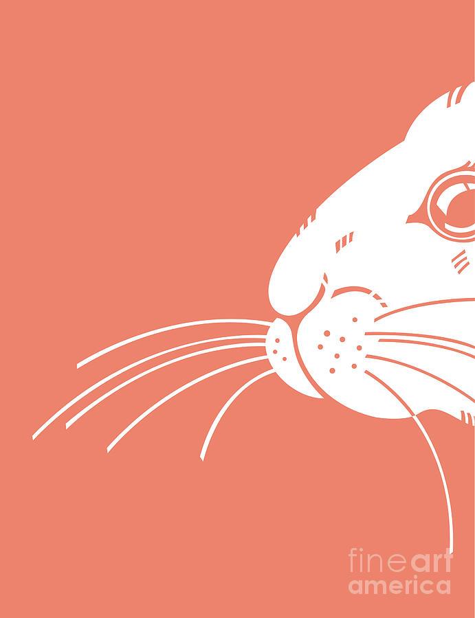 Greeting Digital Art - Rabbit by Studio Dmm Photography, Designs & Art