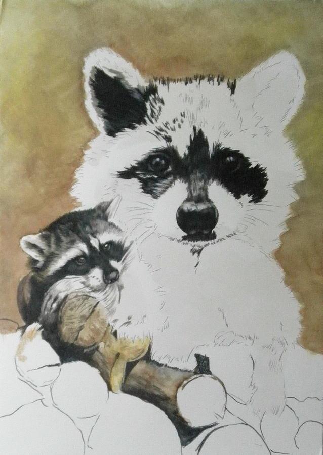 Raccoon day 3 by Barbara Keith