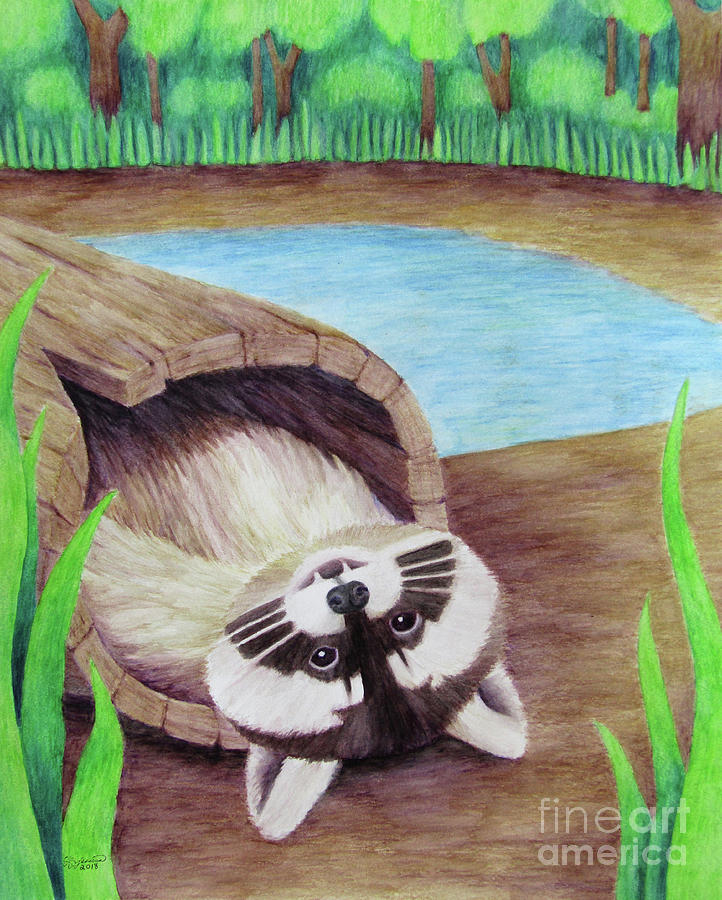 Secret Drawing - Raccoon by The Unfolding Butterfly