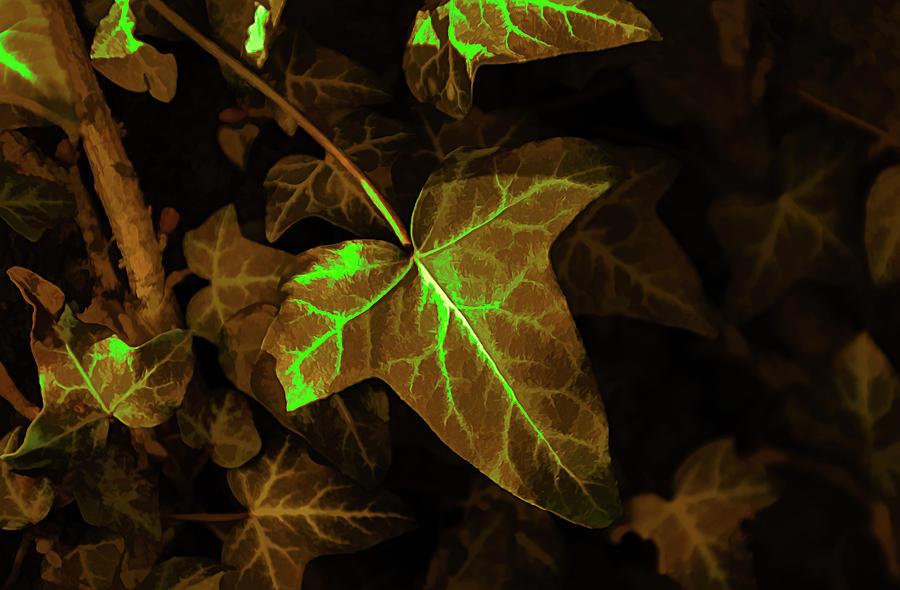 Radioactive Ivy by Scott Lyons