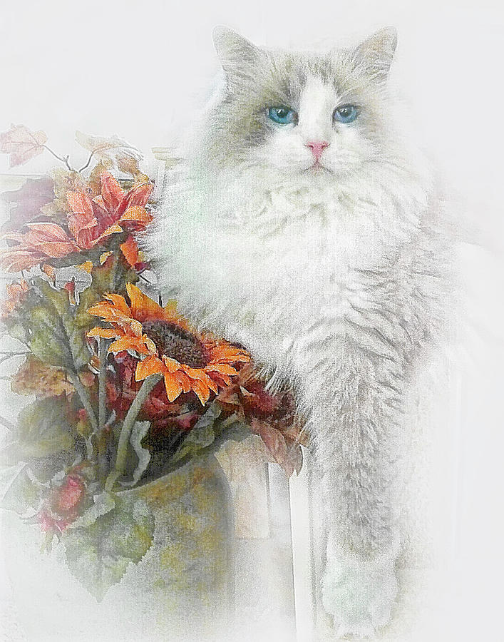 Ragdoll Cat and Sunflowers by David and Carol Kelly