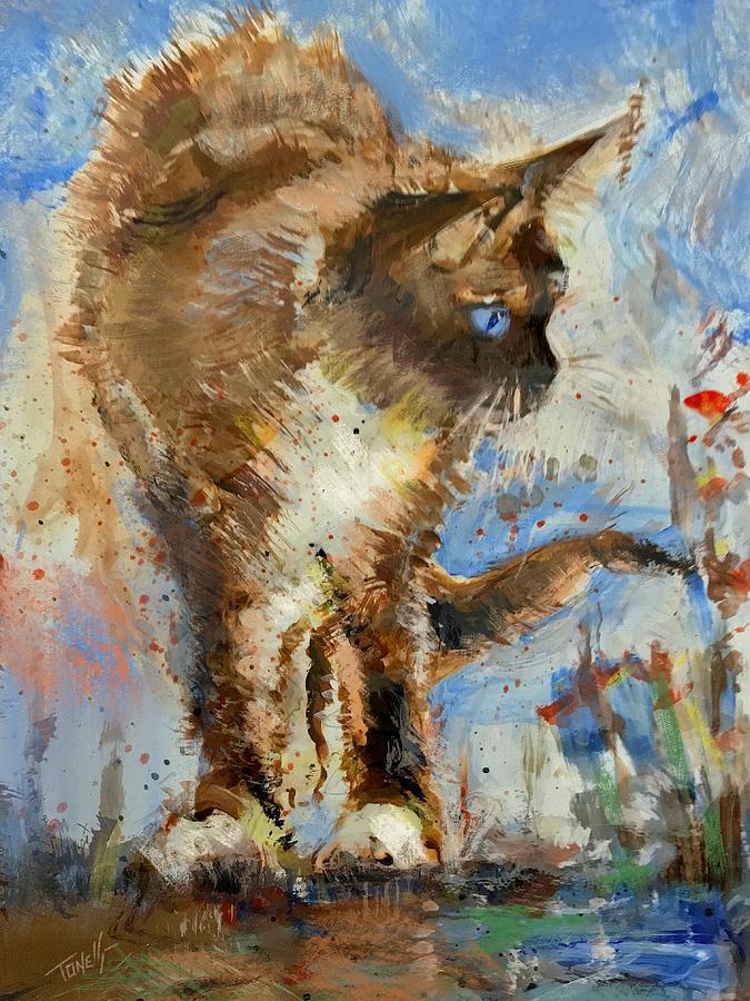 Ragdoll Kitten Cat Mixed Media